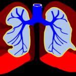 4 стъпки за прочистване на белите дробове (№ 1)